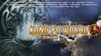 cours-de-kung-fu-paris-15-16