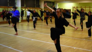 tao chang quan au cours de kung fu paris 15